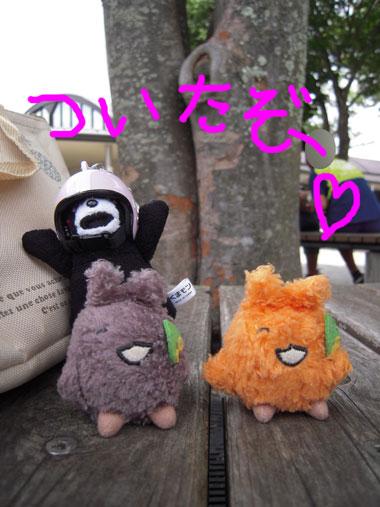 140814いでぼく_05.jpg